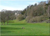 SK2957 : Willersley Castle and parkland by Humphrey Bolton