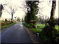 H1471 : Road at Tullylack by Kenneth  Allen