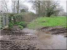 ST5756 : Gateway to streamlet and mud at Shrowl Bridge by Dr Duncan Pepper