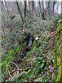 SE0420 : Waterfall off Hanging Stones Lane by Humphrey Bolton