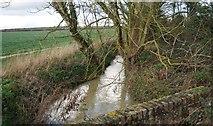 TM1651 : River Fynn by N Chadwick