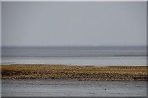 ST1972 : Cardiff : Coastal Scenery by Lewis Clarke