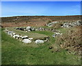 SH2182 : Hut Circle on Holyhead Mountain by Chris Heaton