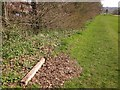 ST5476 : Community Forest Path in Shirehampton Park by Derek Harper