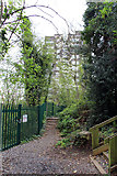 TQ2785 : Path in Belsize Woods Nature Reserve by Kate Jewell
