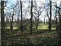 SP1371 : A glimpse of Umberslade Park from the B4101 Pound House Lane by Robin Stott
