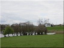 SJ4118 : Cottage Pool by Richard Webb