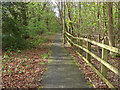 TQ0263 : Walkway and cycle path by Alan Hunt