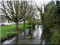 SU8991 : The River Wye, High Wycombe by Bikeboy