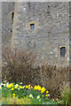 HU4039 : Scalloway Castle by Stephen McKay