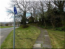 ST2896 : Footpath and cycleway on the north side of Maendy Way, Cwmbran by Jaggery