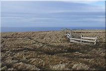 HP6217 : Headland north of Saxa Vord by Stephen McKay