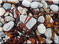 HU6872 : Seaweed and pebbles at the shore of Vogans Voe, Housay by Julian Paren