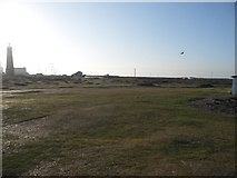 TR0916 : Grassland by Dungeness old lighthouse by David Howard