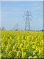 TM3073 : Pylons And Rape by Keith Evans