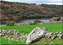 J0324 : Field boundary walls between the Keggall Road and Camlough lake by Eric Jones