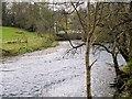 NY2523 : River Derwent near Portinscale Bridge by David Dixon