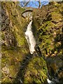 NY3920 : Aira Force by David Dixon
