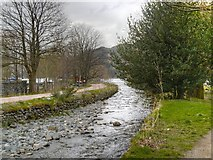 NY3816 : Glenridding Beck by David Dixon