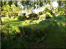 SU9850 : Gardens & Waterfall on Stag Hill Campus by Adrian Cable
