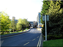 SU9850 : Campus Road on Stag Hill Campus by Adrian Cable