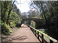 NZ2666 : Footbridge over the Ouse Burn, Jesmond Dene by Les Hull
