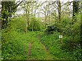 TM3569 : Private track into Sibton Abbey by Adrian Cable