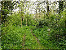 TM3569 : Private track into Sibton Abbey by Geographer