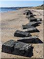 NO4401 : Beach near Dumbarnie Links by William Starkey