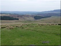 NY9398 : Looking across the moors by Russel Wills
