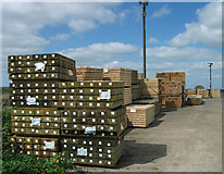 TA0623 : Packaged Timber by David Wright