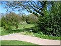 TQ2461 : The northern edge of Banstead Downs Golf Course by Marathon