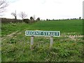 TG1633 : Regent Street Roadsign at Wickmere by Adrian S Pye