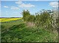 TL1131 : Bridleway, Pegsdon by Humphrey Bolton