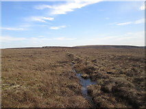 SD9635 : The boundary at Middle Moor Flat by John Slater