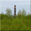 SK4834 : Chimney of Britannia Mills by David Lally