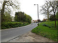 TM4190 : B1062 Bungay Road, Beccles by Adrian Cable