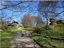 SE2065 : Path at Brimham Rocks by Derek Harper