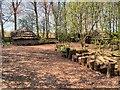 SD4214 : Mere Tun Roundhouse Village, Martin Mere by David Dixon