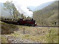 SN7178 : Vale of Rheidol Railway by John Lucas