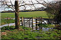 SU6491 : Flooded Gate onto the Common by Des Blenkinsopp