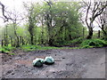 SP0577 : Fly-Tipping Icknield Street by Roy Hughes