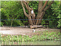 TQ3677 : Cat by the pond by Stephen Craven