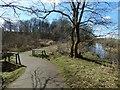 NS5162 : Footbridge over the Blacksey Burn by Lairich Rig