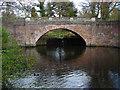 SU9770 : Obelisk Pond bridge by Alan Hunt