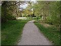 SU9770 : Track by the Obelisk Pond by Alan Hunt