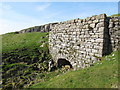 NY6342 : Busk lime kiln and quarry by Mike Quinn