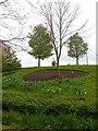 TQ8353 : Wood Garden, Leeds Castle by Paul Gillett