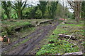 SU6423 : Remains of West Meon station platforms by David Martin