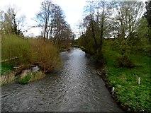 SO3958 : The River Arrow, Pembridge by Bikeboy